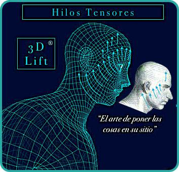 Hilos Tensores Espiculados Cog 3D Lift® 14