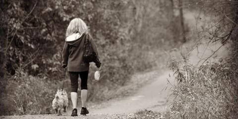 beneficios de pasear