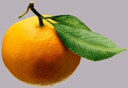 Dieta: 1 Dia Detox con Frutas y Ensalada de Piñones