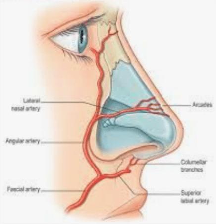Rinomodelación la Rinoplastia sin cirugía 17