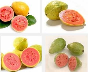 El Beneficio de incluir Guayaba en la dieta