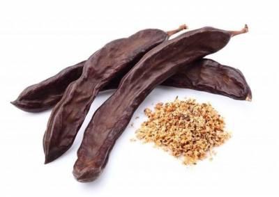 La Algarroba como el sustituto del chocolate