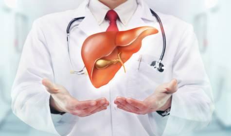 Los Alimentos para un Hígado sano y desintoxicado