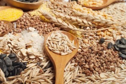 Los Cereales que nos aportan al cuerpo?