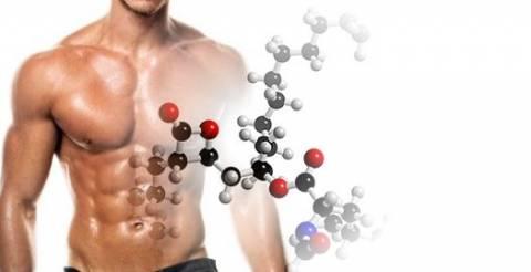 Los Aminoácidos no esenciales conócelos!