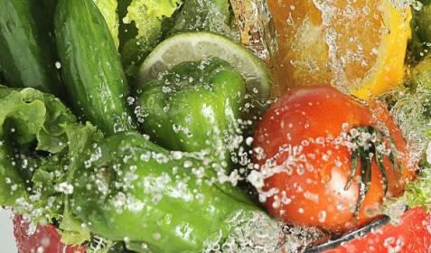 los fitoesteroles vegetales