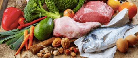 dieta paleolitica – la paleo dieta