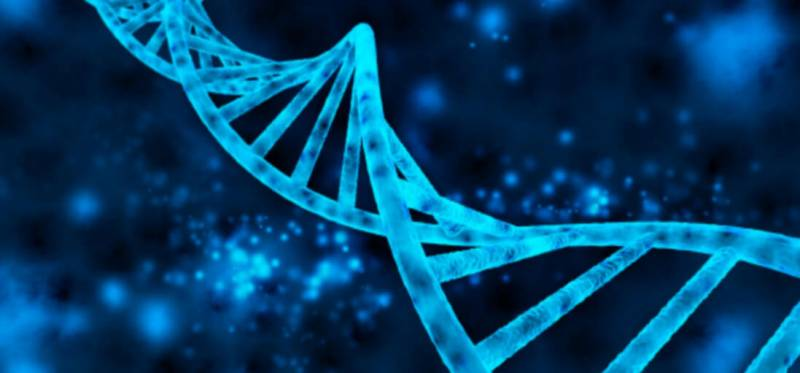 double-helix-of-the-dna