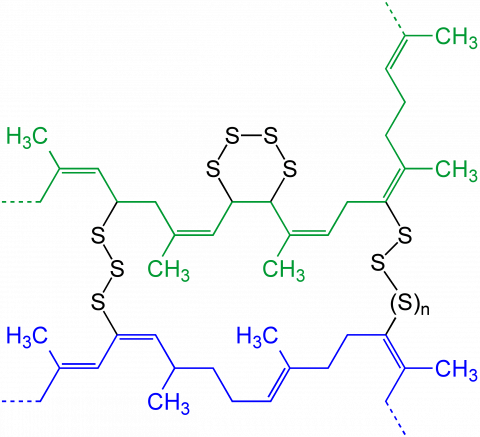 vulcanization_of_polyisoprene_v.2
